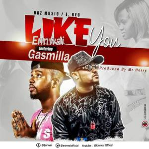 EnnWai-Like-You-Ft-Gasmilla-Prod-By-Mr.-Herry-www.musicafriagh.com^.jpg