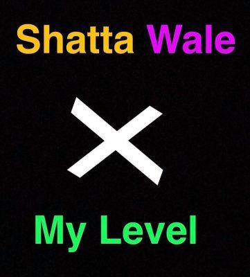 Shatta-Wale-My-Level-Musicafriagh.com^.jpg