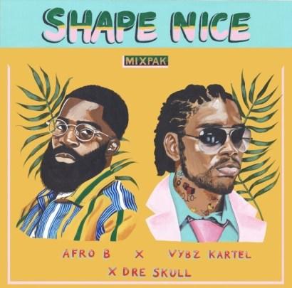 Afro-B-X-Vybz-Kartel-X-Dre-Skull-Shape-Nice-Musicafriagh.com.jpg