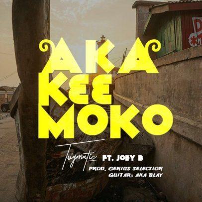 Trigmatic-ft-Joey-B_Aka_K33_Moko-Musicafriagh.com.jpg